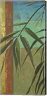 Bamboo & Stripes II Fine-Art Print