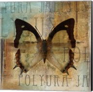 Polyurabutterfly I Fine-Art Print