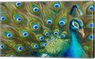 Wild Feathers Fine-Art Print