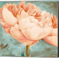 Beautiful Peonies Square II Fine-Art Print
