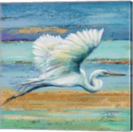 Great Egret I Fine-Art Print