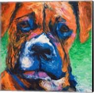 Puppy Dog Eyes II Fine-Art Print
