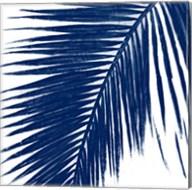 Indigo Baru Palm I Fine-Art Print