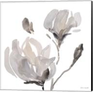 Gray Tonal Magnolias I Fine-Art Print