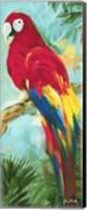 Tropic Parrots I Fine-Art Print