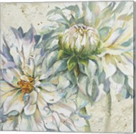 White Dahlias I Fine-Art Print