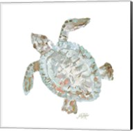 Neutral Turtle II Fine-Art Print