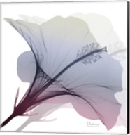 Tasty Grape Hibiscus 2 Fine-Art Print