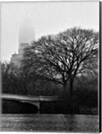 Central Park Bridge I Fine-Art Print
