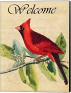 Cardinal Welcome Fine-Art Print