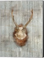 Antlers 1 Fine-Art Print