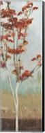 Maple Tree II Fine-Art Print