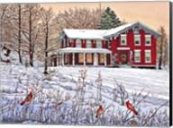 King's Cardinals, Eden Ny Fine-Art Print