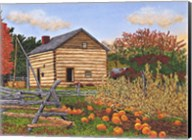 Pumpkin Patch At Mumford Ny Fine-Art Print