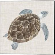 Sea Turtle I Fine-Art Print