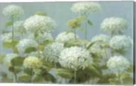 White Hydrangea Garden Fine-Art Print