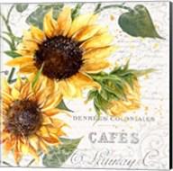 Summertime Sunflowers II Fine-Art Print