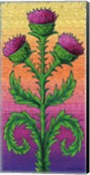 Thistle Fine-Art Print
