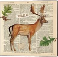 Lodge Collage III Fine-Art Print