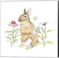 Wildflower Bunnies IV Fine-Art Print