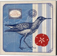 Sea Bird I Fine-Art Print