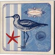 Sea Bird II Fine-Art Print