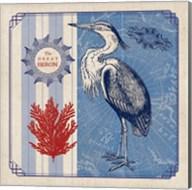 Sea Bird IV Fine-Art Print