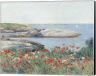 Poppies, Isles of Shoals, 1891 Fine-Art Print