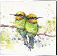 Family (Rainbow Bee Eaters) Fine-Art Print