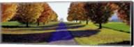 Autumn Road, Storm King Mountain, New York Fine-Art Print