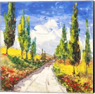 Strada Toscana Fine-Art Print