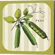 Linen Vegetable IV Fine-Art Print