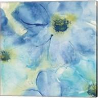 Seashell Cosmos I Fine-Art Print