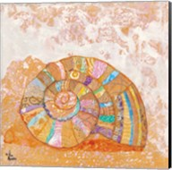 Spiral Seashell Fine-Art Print