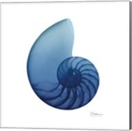 Scenic Water Snail 3 Fine-Art Print