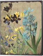 Fresh Meadow Bloom Fine-Art Print