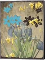 Meadow Bloom Fine-Art Print