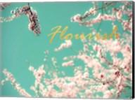 Flourish Apple Sky Fine-Art Print