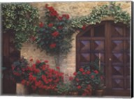Tuscan Trellis Fine-Art Print