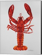 Red Lobster Fine-Art Print