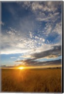 Wheat Field Sunset Fine-Art Print