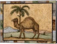 Camel Fine-Art Print