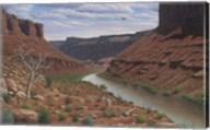 Along The Colorado Fine-Art Print