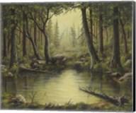 Evening at the Creek Fine-Art Print