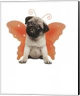 Wings - Pug Fine-Art Print
