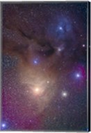 The colorful region around Antares in Scorpius and blue Rho Ophiuchi in Ophiuchus Fine-Art Print