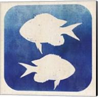 Watermark Fish Fine-Art Print