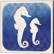 Watermark Seahorse Fine-Art Print