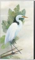 Standing Egret I Fine-Art Print