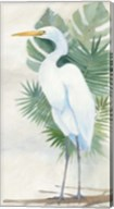 Standing Egret II Fine-Art Print